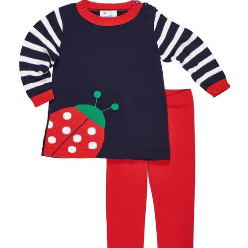 Navy  Ladybug Sweater and Red Leggings