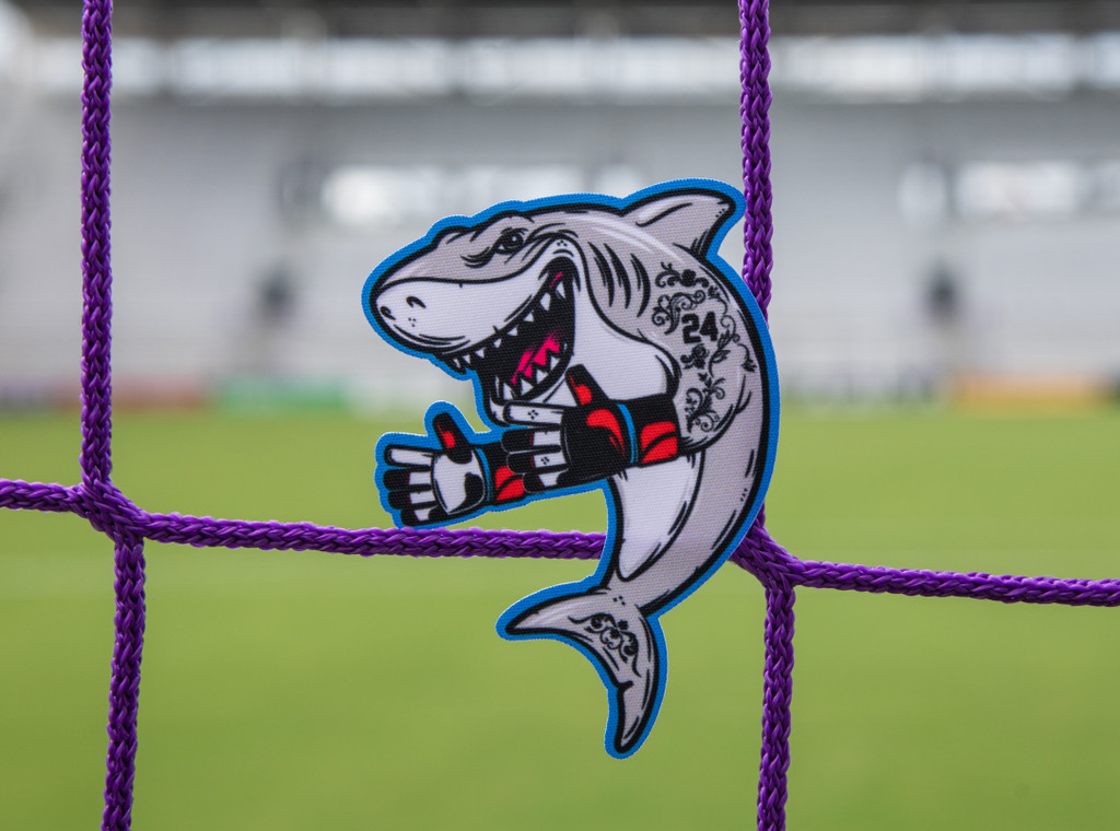 Sharks and Minnows Patch