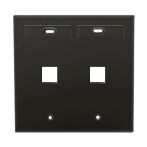 black, 2 port wallplate with ID windows