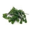 Luer Lock Syringe Tip 14g - 50pcs
