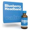 Blueberry Headband terpene blend by xtra laboratories