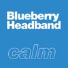 Blueberry Headband terpenes by xtra laboratories