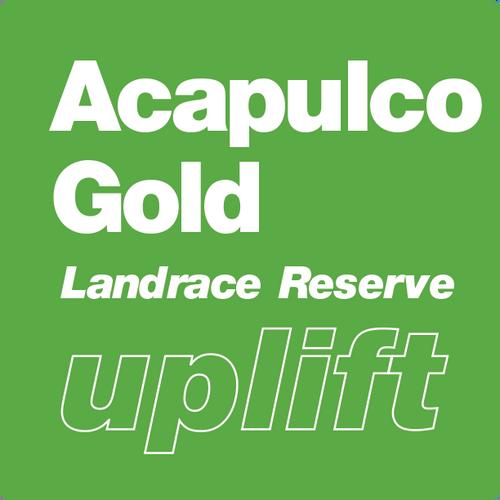 Acapulco Gold | Landrace Reserve