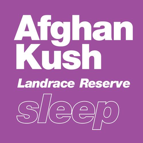 Afghan Kush   Landrace Reserve