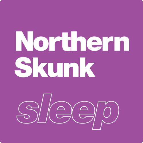 Northern Skunk