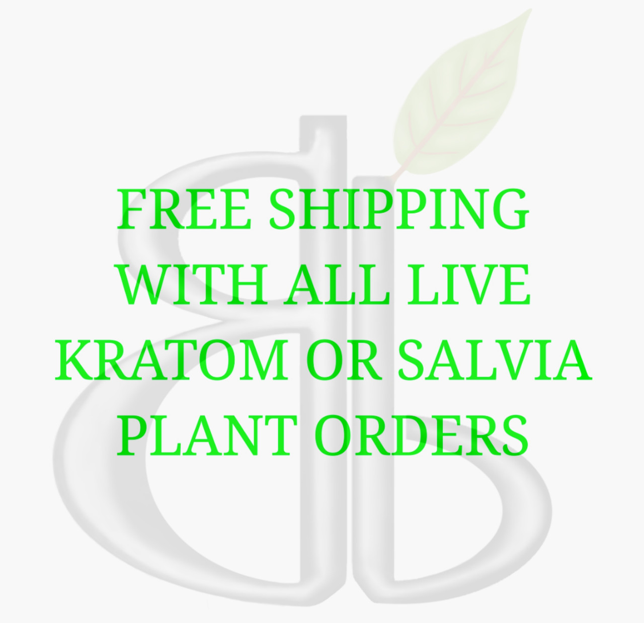 Free shipping on all live kratom or salvia plant orders