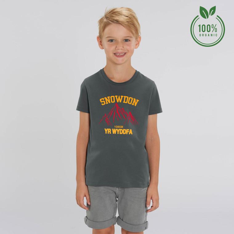 Boys Snowdon Red Mountain Organic Cotton T-shirt