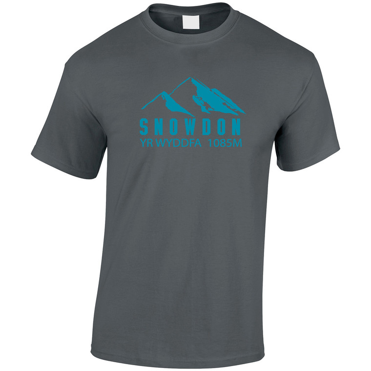 Adult Snowdon Blue Mountain Yr Wyddfa Heavy Cotton T-Shirt