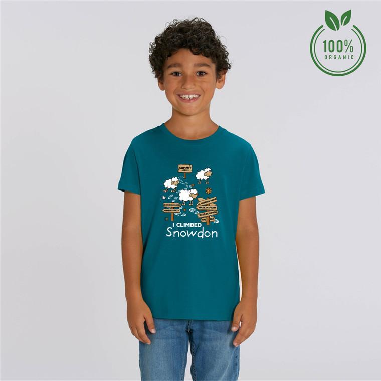 Boys 'I Climbed Snowdon' Organic Cotton T-shirt