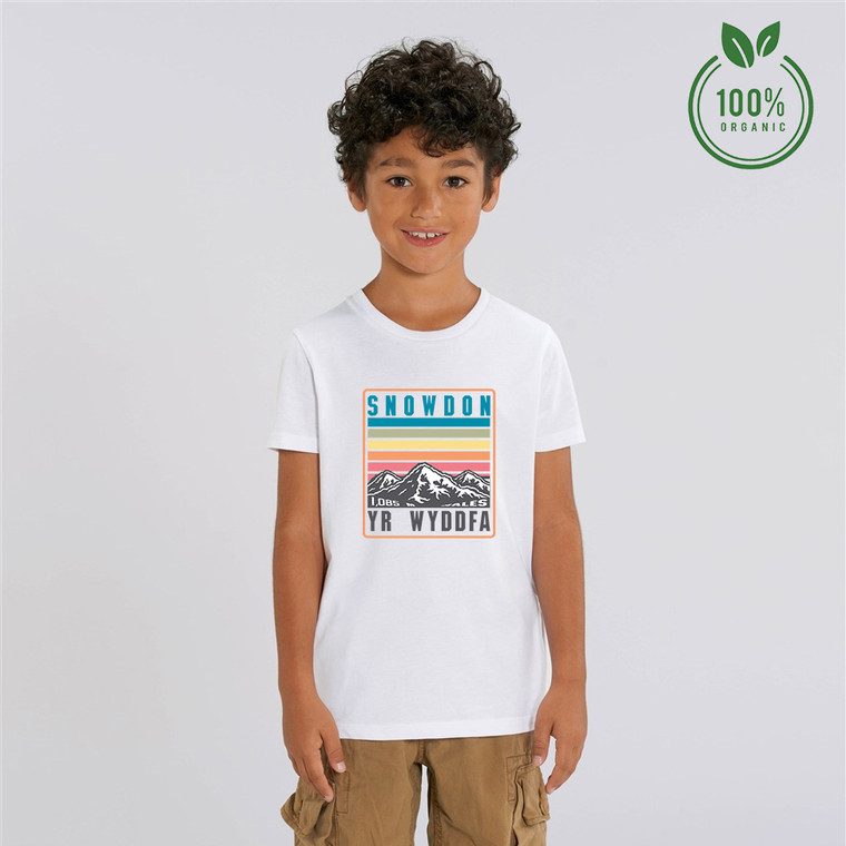 Boys Snowdon Rainbow Organic Cotton T-shirt