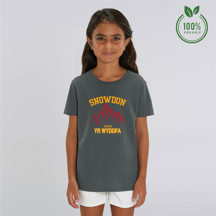 Girls Snowdon Red Mountain Organic Cotton T-shirt