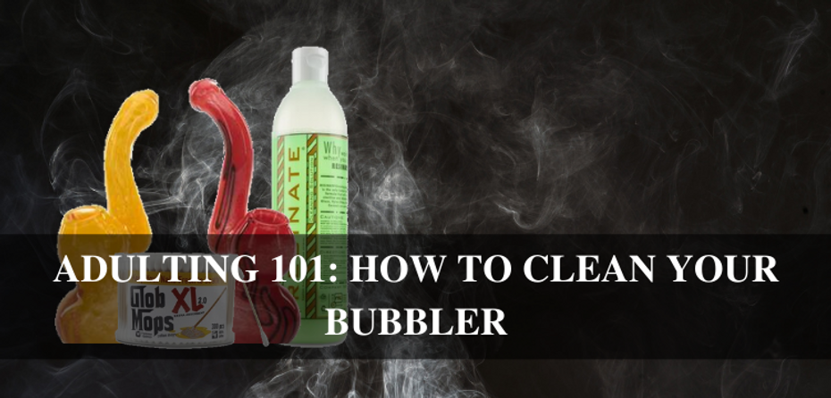 Adulting 101 with Cloud 9 Smoke Co: How to Clean Your Bubbler!
