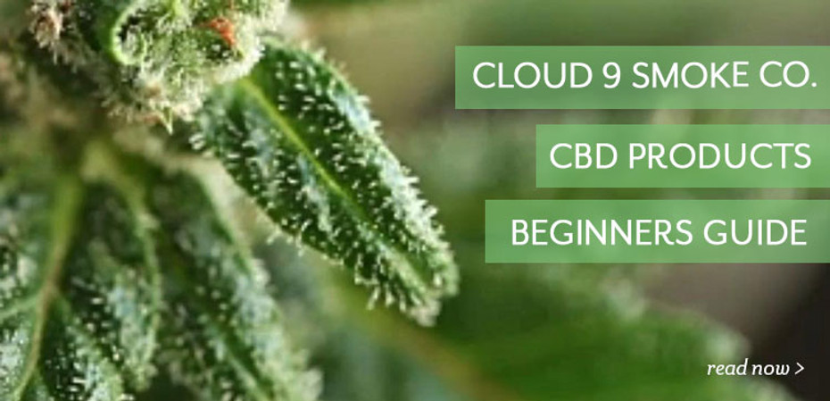 Cloud 9 Smoke Co. Official Beginners Guide to CBD