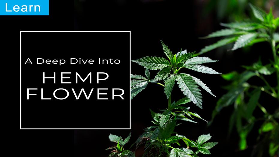 Learn: A Deep Dive Into CBD Hemp Flower (2020)