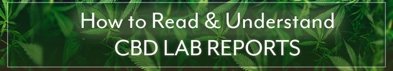 cbd-lab-report-770x140.jpg