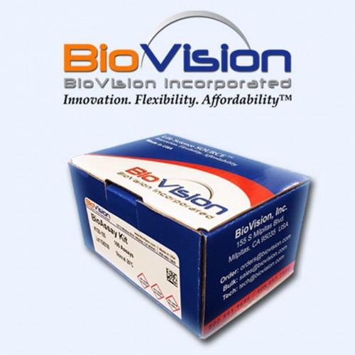 IkBalpha Antibody
