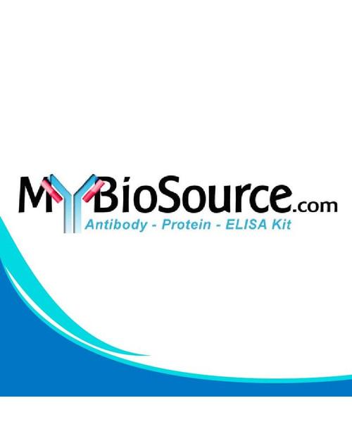 Guinea pig Visceral adipose Tissue Derived Serine Protease Inhibitor ELISA Kit