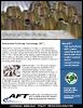AFT's Chemical Film PDF Brochure