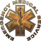 Decal - GOLD Star of Life EMS (Window Size)