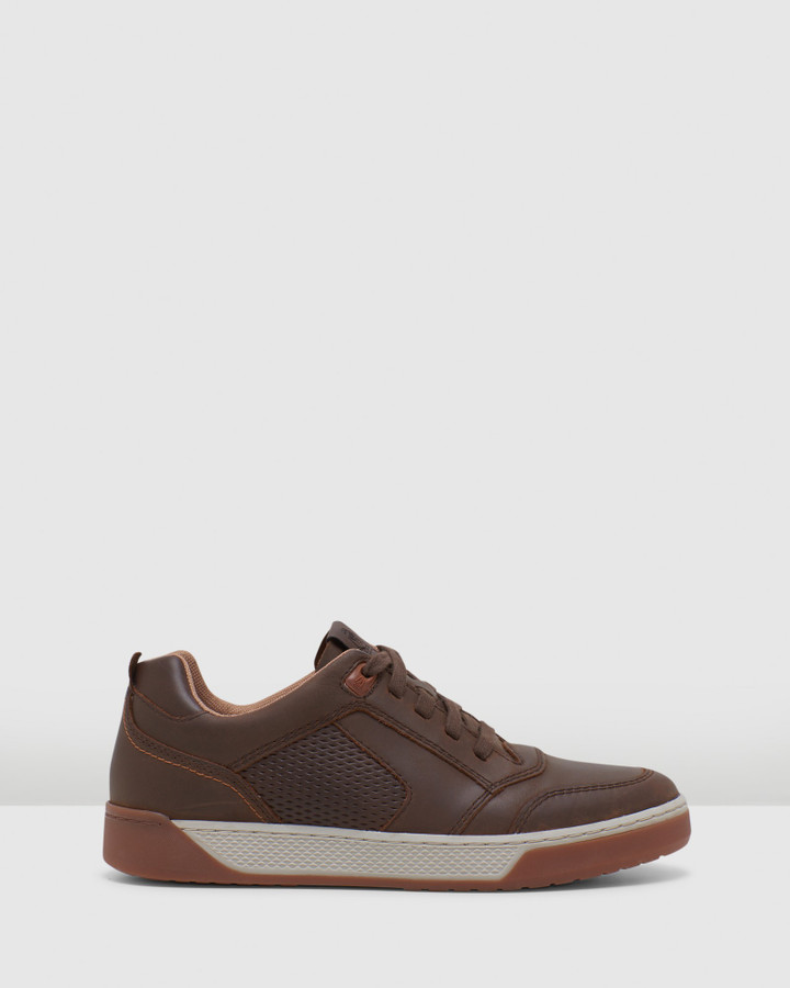 Hush Puppies Ampato Brown