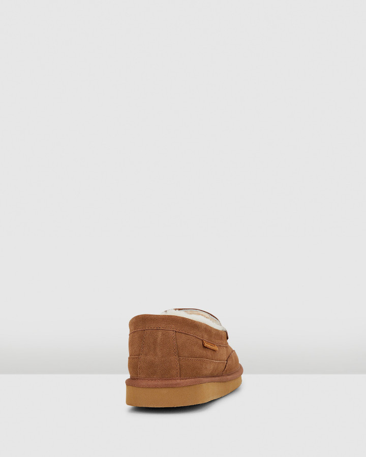 Hush Puppies Leander Chestnut Suede