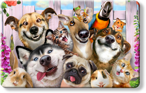 Pets Selfie - Howard Robinson smile dog cat parrot frog hamster