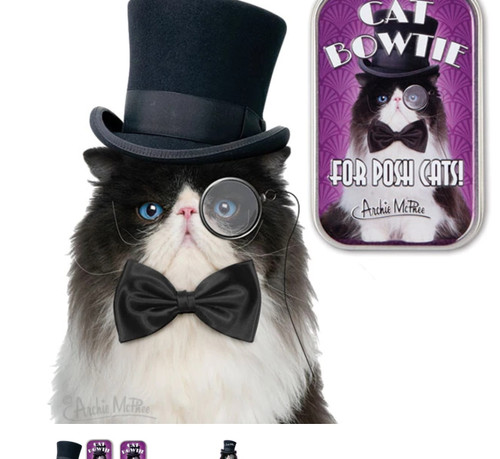 Accoutrements Cat Bowtie 26938