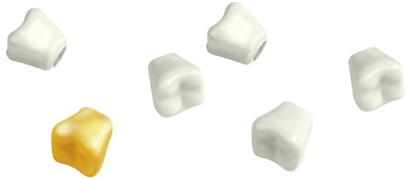 Kikkerland Teeth Magnets, Set of 6 54448