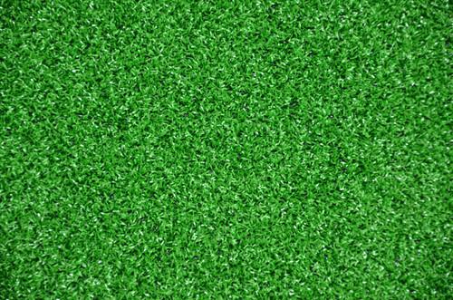 Dean Indoor Outdoor Green Artificial Turf Rug 6 X 8