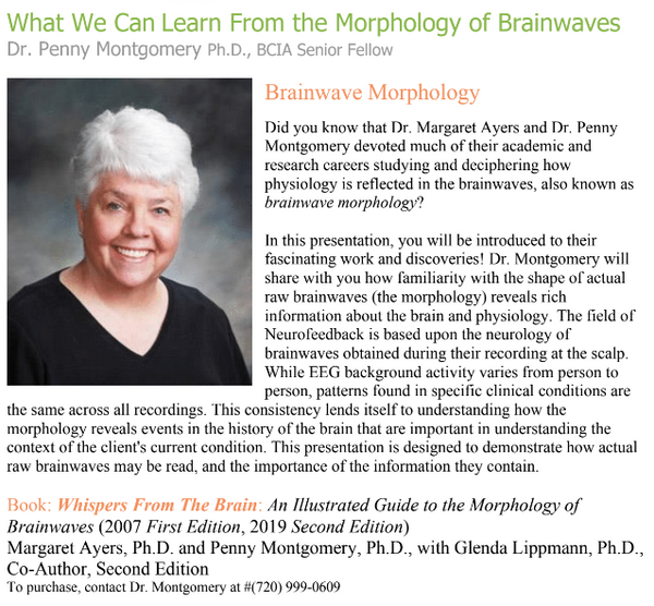 What We Can Learn from the Morphology of Brainwaves