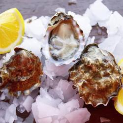 Kumamoto Oysters (30 pcs)