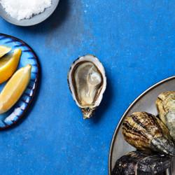 Shigoku Oysters (30 pcs)