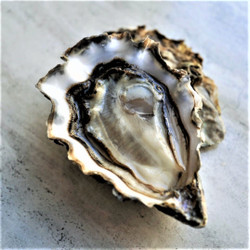 *Limited Release* Fanny Bay Petite Oysters (30 pcs)
