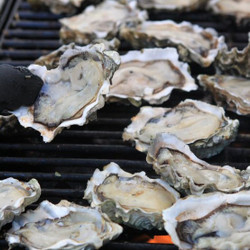 OysterFest '21 Oysters