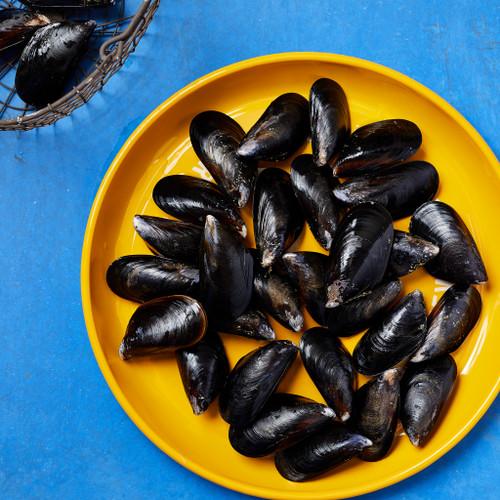 Totten Inlet Mussels