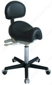 Ergo Chair with Back