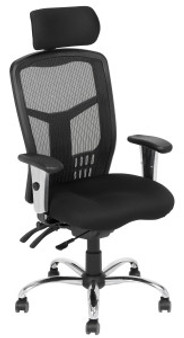 Executive Ergo Chair
