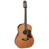 Takamine CRN-TS1 6 Strings Dreadnaught Acoustic Guitar(Case Included) with Solid Thermal Spruce Top and CT4B-II Onboard Electronics