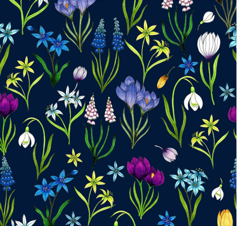 Springbulbs
