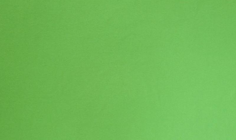 Parrot Green Ribb LS