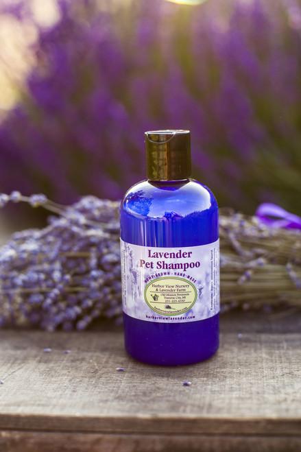 Lavender Pet Shampoo, 8 ounces