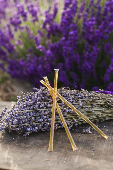 Lavender Honey Sticks
