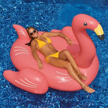 Giant Flamingo - Actual Photo