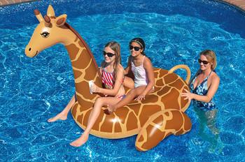 Giant Giraffe Ride on - Actual Photo