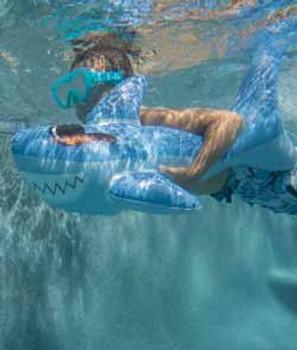 Swimpals Surfin Shark
