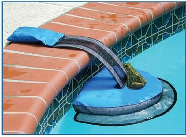 Froglog escape ramp
