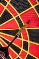 Arachnid Cricket Pro 800 - Out of Box Dart Board