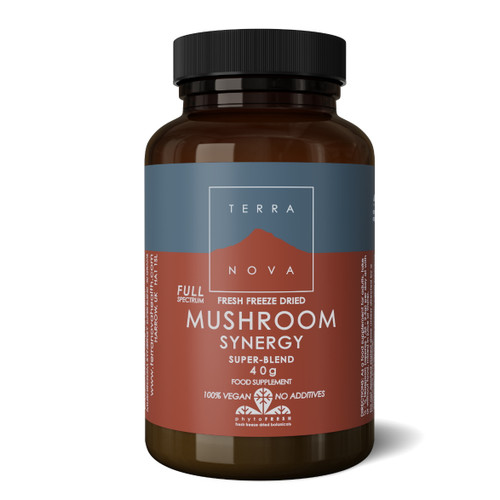Terranova Mushroom Synergy Super-Blend Powder - 40g