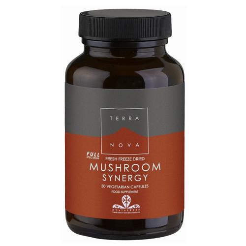 Terranova Mushroom Synergy Super-Blend - 50 capsules