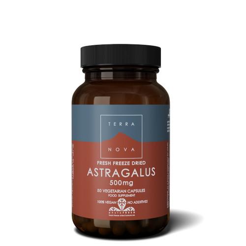 Terranova Astragalus 500mg - 50 capsules